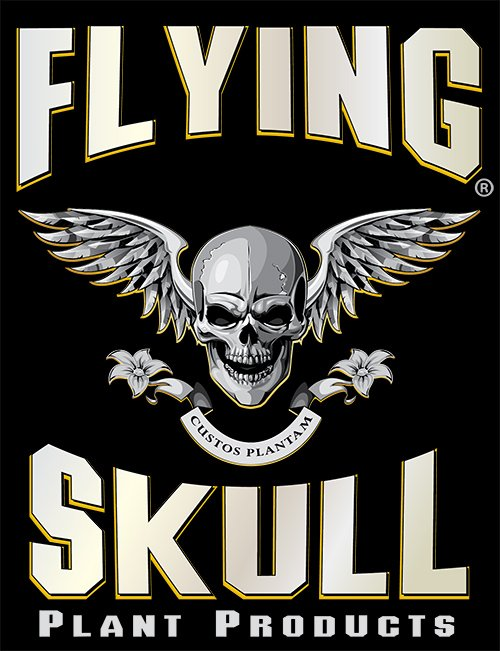 flyingskulllogo-web